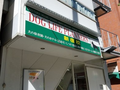 老犬ホーム新宿