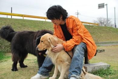 老犬介護ドットコム 河村