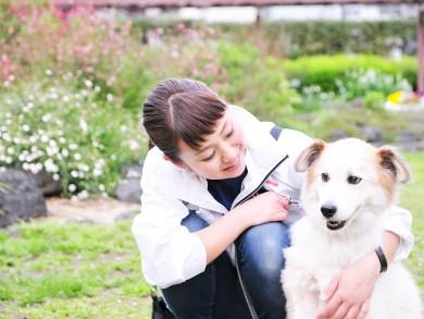老犬ホーム東京