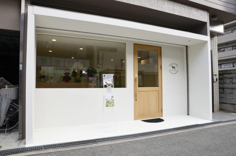 老犬介護ホームメロー 大阪