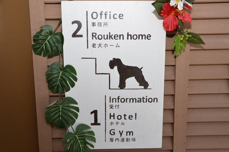 老犬ホーム ぬちどぅたから アクセス情報