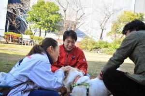 doglife019