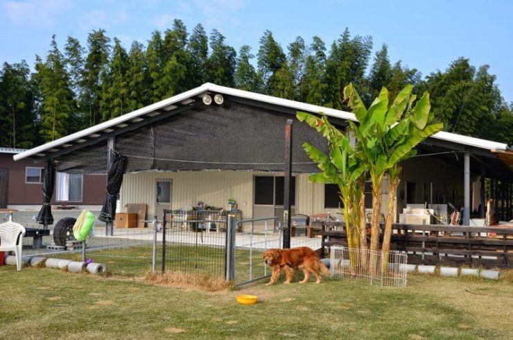 | 【老犬ホームの窓口】老犬介護ドットコム